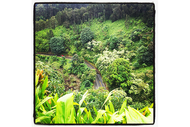 The Magic of Maui: a Place of Healing