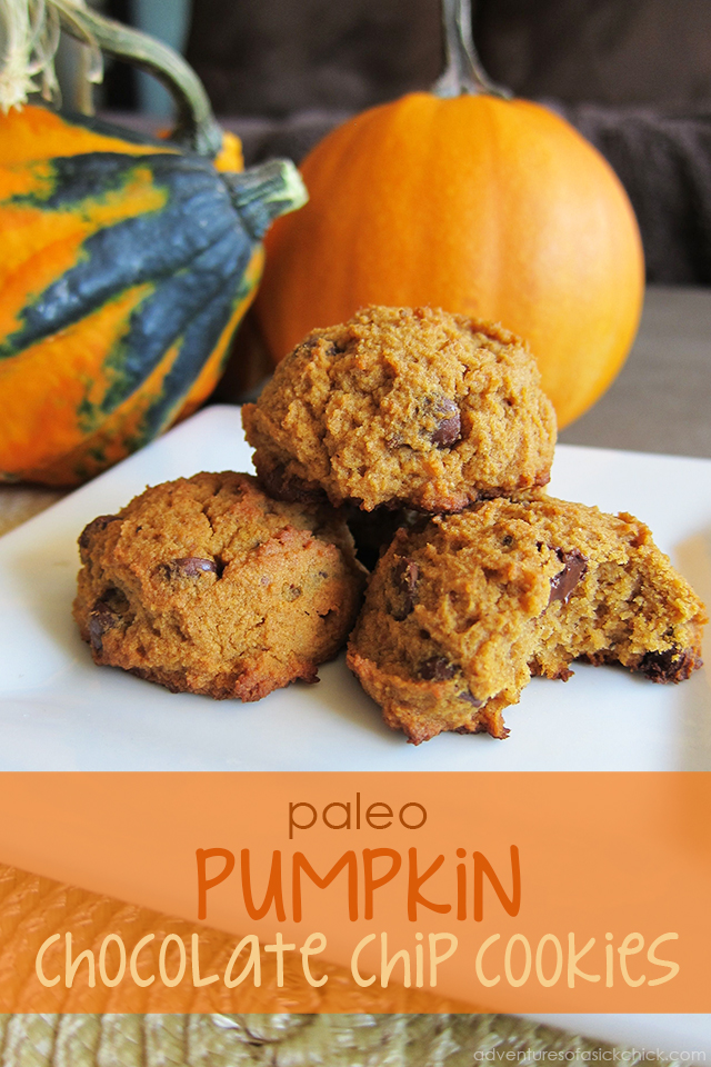Paleo Pumpkin Chocolate Chip Cookies (Nut-Free)