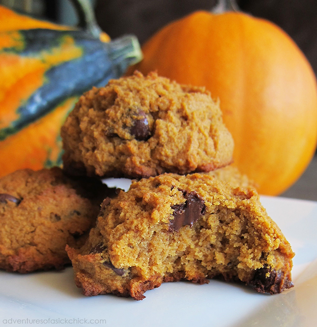 Easy Paleo Fall Recipes: Paleo Pumpkin Chocolate Chip Cookies (Nut-Free)