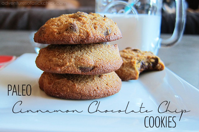 Paleo Cinnamon Chocolate Chip Cookies (Nut-Free)