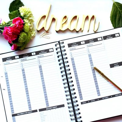 Staying Organized and Motivated (PROSPR Planner Review)